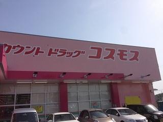 コスモス 大久保店 (2).JPG
