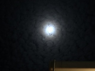 明石市 夜空 (2).jpg
