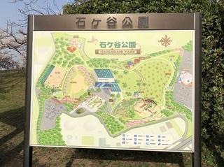 桜 2018 (19).jpg