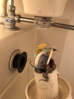 洗面器の詰まり (1).jpg