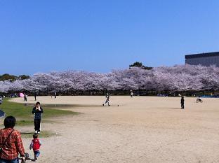 石ヶ谷公園 (1).jpg