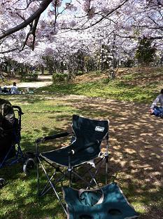 石ヶ谷公園 (5).jpg