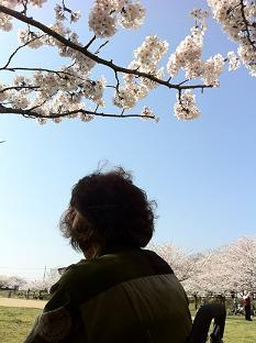 石ヶ谷公園 (7).jpg