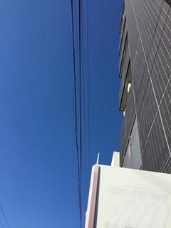空 (1).jpg