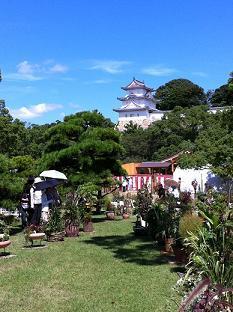 明石公園 3.jpg