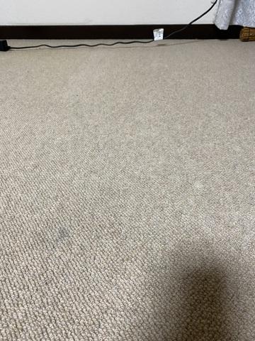 絨毯after (2).jpg
